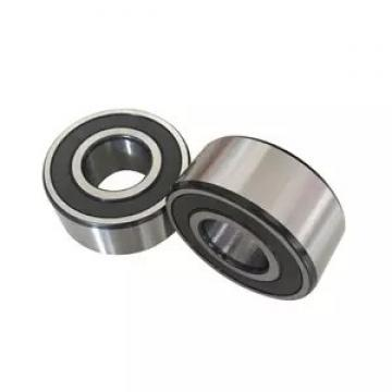 SKF 6007-2Z/C3WT  Single Row Ball Bearings